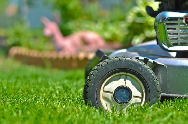 Kamloops Movers offer tips for Spring Lawn Care