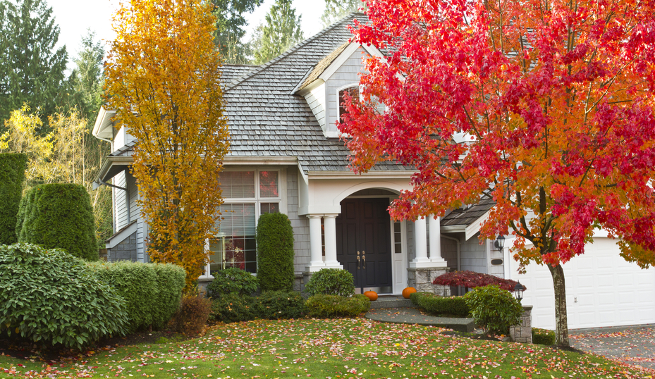 Let our Kamloops Movers help you relocate this fall.